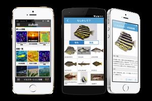 画像認識によるお魚判定アプリ「魚みっけ」